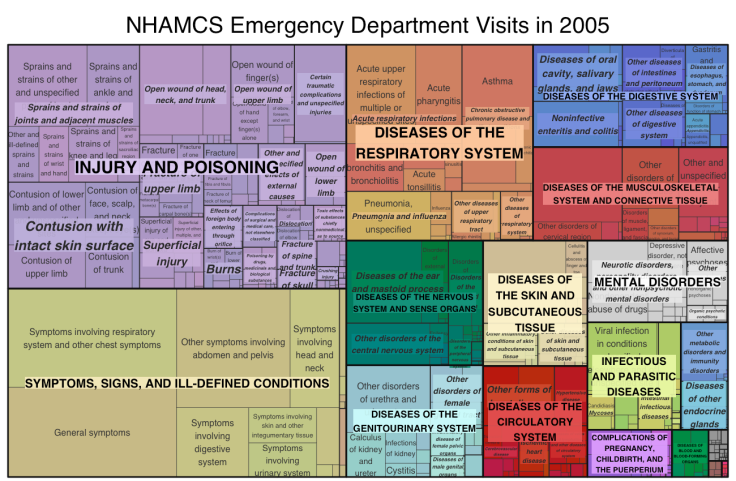Regular Expression & Treemaps to Visualize Emergency Department Visits